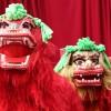 Den Haag viert uitbundig Chinees Nieuwjaar: Foto's