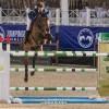 Spanning en sensatie bij Jumping Antwerpen: Foto's