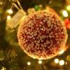 Den Haag in uitbundige kerstsferen: Foto's
